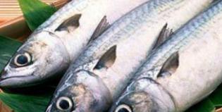 Что за черви встречаются в соленой селедке и чем они опасны для человека?