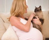 Глисты при беременности - что делать?