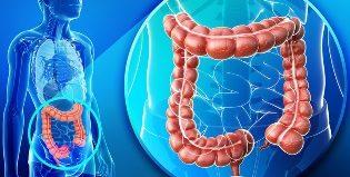 Диагностика заболеваний кишечника: когда нужна и методы исследования