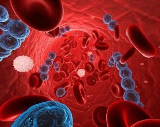 Опасности стрептококковой инфекции, и меры профилактики заболевания