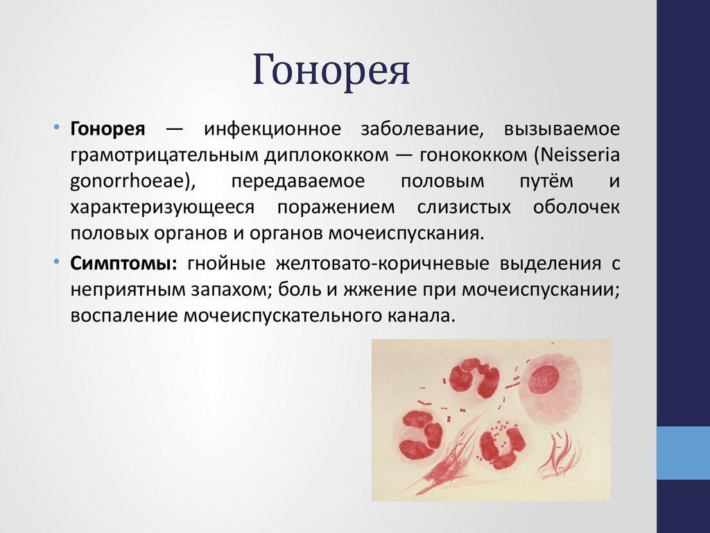 Общая информация обинфекционном заболевании