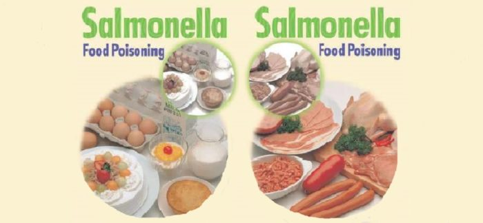 Как быстро избавиться от сальмонеллеза у взрослых и детей - симптомы, пути передачи