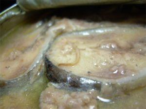 красные (оранжевые) черви в консервированной сайре - опасны ли для человека?